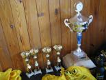 O pohár města Lázně Kynžvart 2011